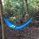 image by Max232 in Hammocks