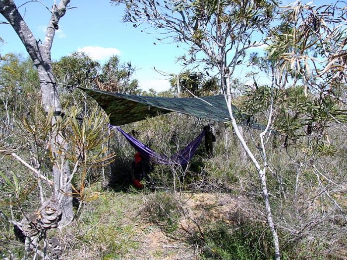hammock calender