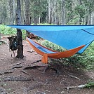 set up by mrmike in Hammocks