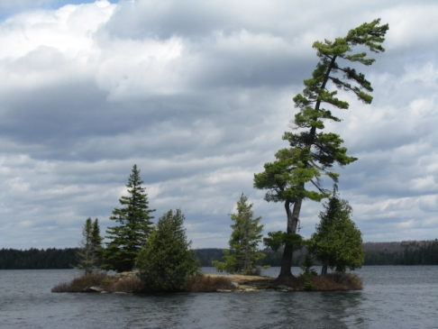Mcintosh Lake, Algonquin