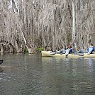 Rainbow River Camp and Kayak by sunsetkayaker in Group Campouts