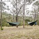 Main Range National Park – Queensland, Australia by peterhase in Hammock Landscapes