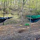 Paul Grist State Park by sonic5150 in Hammock Landscapes