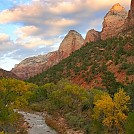 Zion NP by Texas Hanger in Hammock Landscapes