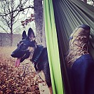 Hiking with my dog Kimber, resting in a Pares SM hammock by okieinalaska in Hammocks