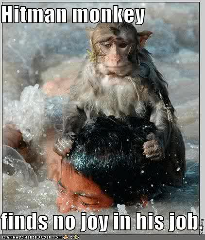 Hit Man Monkey