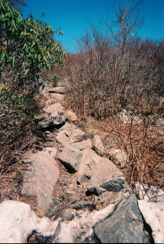 Mount Rogers Rocky Trail