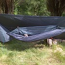 Outings by Stevie in Hammock Landscapes