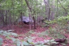 Our camp site in Uwharrie Forest