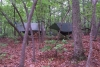 Our camp site in Uwharrie Forest by dsshepard in Hammock Landscapes