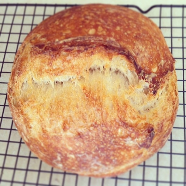 Goat Island Bread