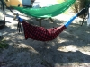 Edisto Beach State Park by chickenwing in Hammocks