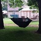 Hanging in backyard