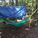 1st hang in first homemade hammock! by DaveWhiteEagle in Hammocks