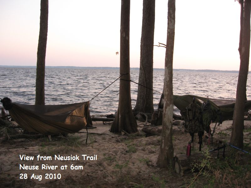 Hanging Along The Shore Of The Neuse River
