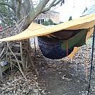 Hanging in my backyard by jimbo082 in Hammock Landscapes