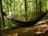 The Peace Pipe by Pipsissewa in Hammocks