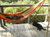 Trust And Wonder by Pipsissewa in Hammocks