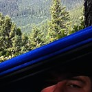 Tree top hang by Benson Burner in Hammock Landscapes