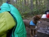Peapod And Dog At Newhalem Campground In North Cascades Nat'l Park