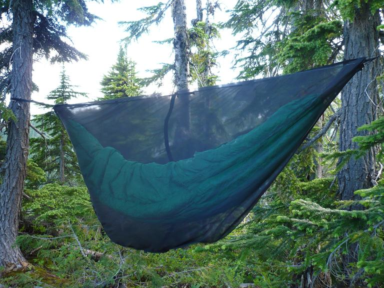 Eno D Peapod Eno Bug Net In North Cascades Hammock