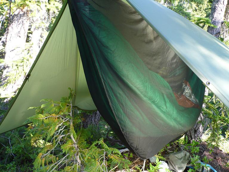North Cascades Park W ENO Guardian Bug Net 7 18 19