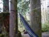 Eno D With Slap Straps On Baker Lake by hikingjer in Hammock Landscapes