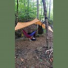 Clark State Forest, southern Indiana by pfeif in Hammocks