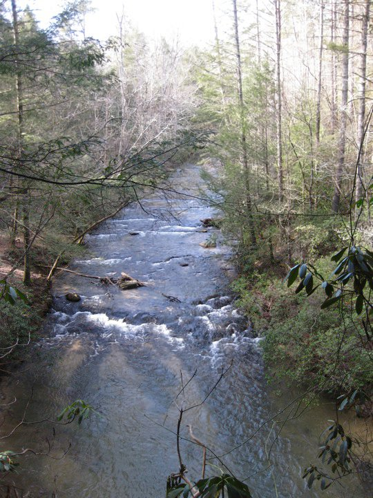 Panther Creek 02/10