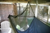 "Bridge hammock/w .625"" pole and net"