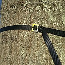 Sqidmark's Tree Belt for Two - overhand by sqidmark in Other Accessories not listed