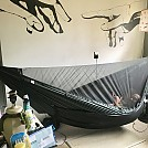 Chameleon joins the Family by ShortRound in Hammocks