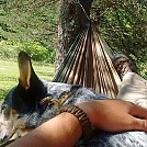 sugar hammock by JW Davis in Hammocks