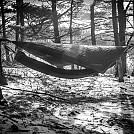 January hang by jcdflint in Hammock Landscapes