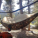 GT SBP hanging at Bear Lake by Scarecrow in Hammocks