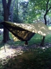 My Old Hammock Setup by rball0954 in Hammocks