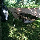new asym tarp