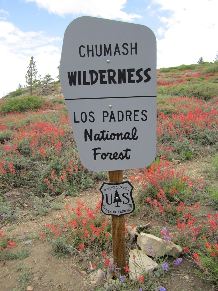 Chumash Wilderness