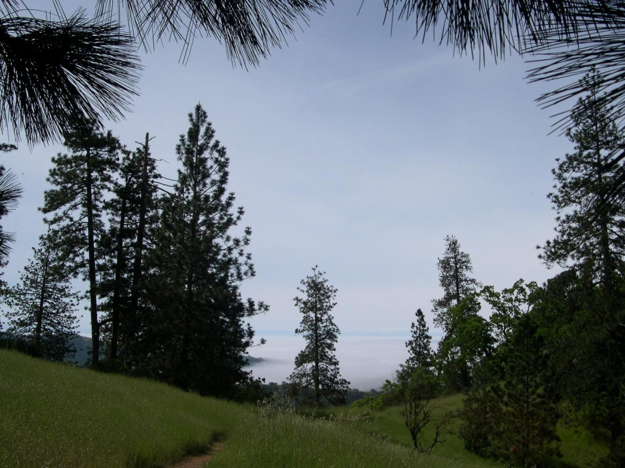 Monument Trail Vista