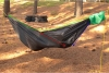 Hammock Body Diagram 2