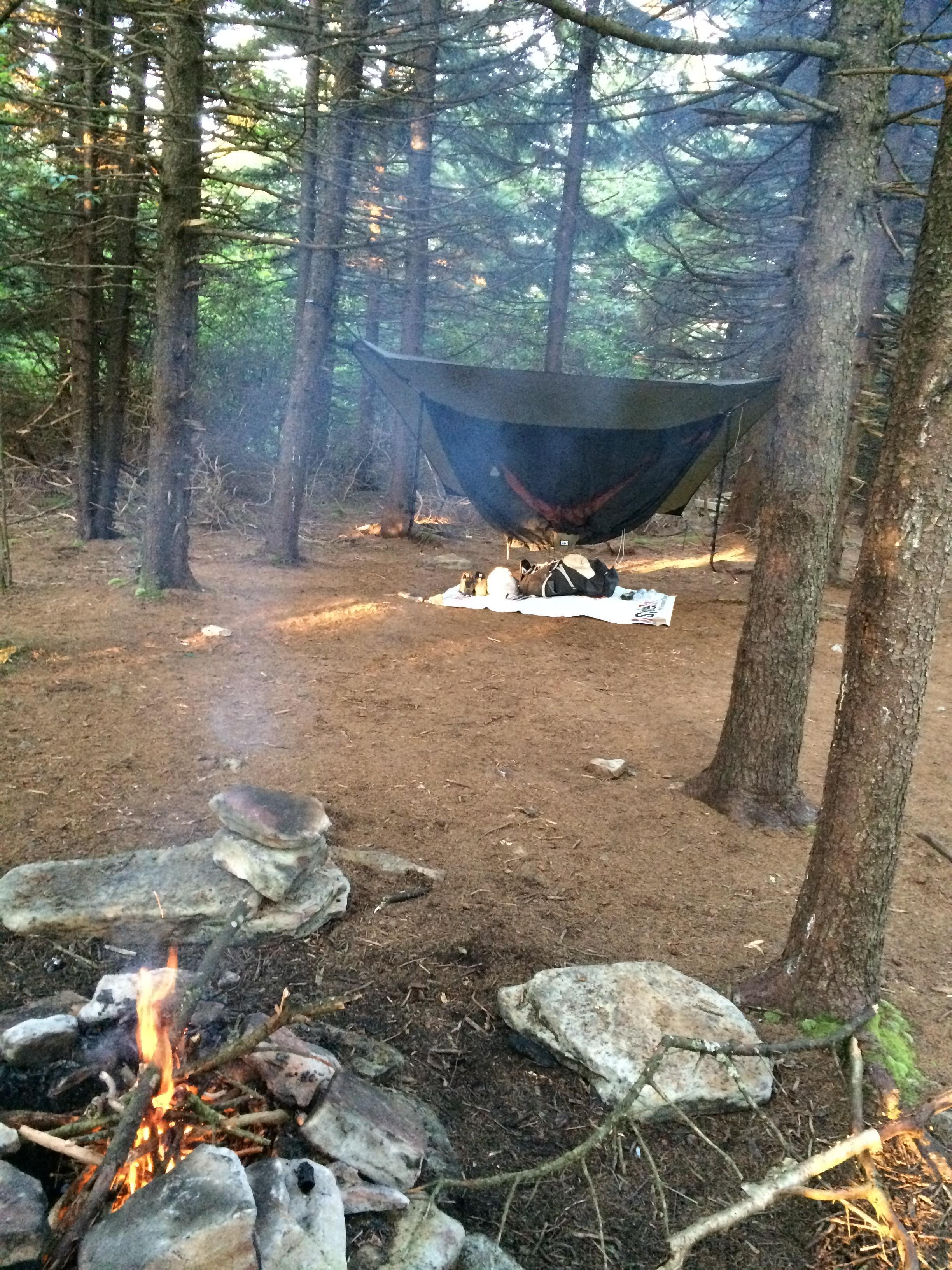 Spruce Knob/Seneca Creek, West Virginia