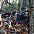 Forbes State Forest by Caboose24 in Hammocks