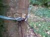 Tarp line spool