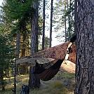 My floating nest