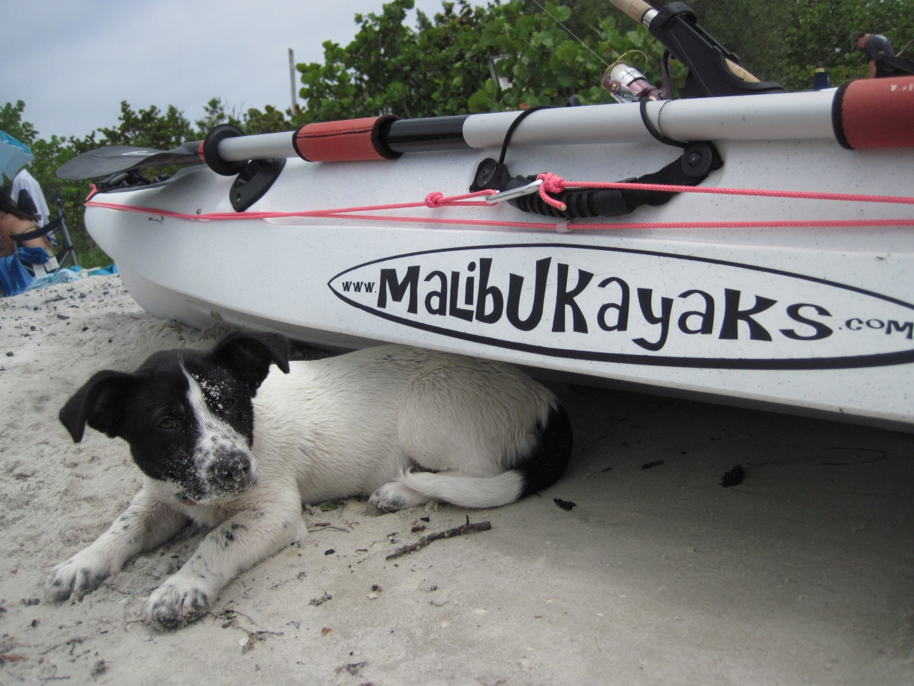 2010 05 01 Tiki Under Kayak 1