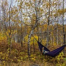 Duluth, MN fall colors by Tinga in Hammock Landscapes