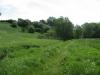 Img 2656 S by BlazeAway in Hammock Landscapes