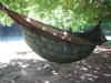 Incubator by hutzelbein in Hammocks