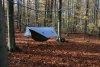 Hammockin' In The Homely Woods In Fall Colors by saupacker in Hammock Landscapes