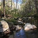 Virginia '16 by activetravel in Hammock Landscapes